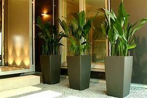 Pflanzen Als Raumteiler : pflanzen als raumteiler top schrank als raumteiler einrichten pflanzen als raumteiler bi with ~ Sanjose-hotels-ca.com Haus und Dekorationen