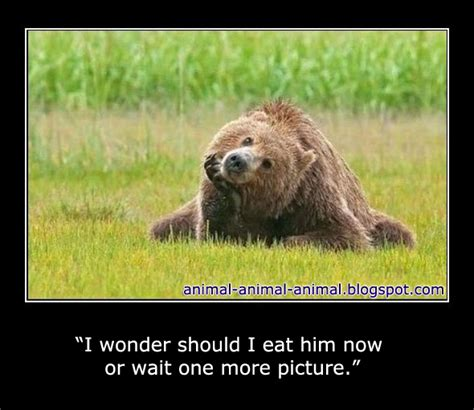 Animal Memes - cool animals memes part 2