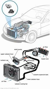 Wiring Diagram  9 Mini Cooper Cooling System Diagram