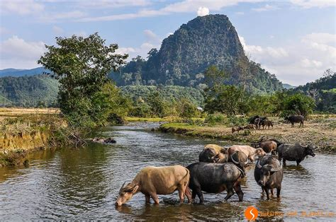 Travel to Laos on a budget, useful tips and information
