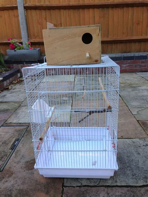 bird cage with nest box norwich norfolk pets4homes
