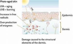 How To Stop And Reverse Photoaging