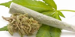 Online Drogen Shop : frau 29 unter drogen am steuer unterwegs ~ Orissabook.com Haus und Dekorationen