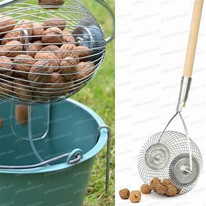 Tondre La Pelouse Sans Ramasser : rouleau ramasse noix chataigne marron et gland r colter les fruits ~ Melissatoandfro.com Idées de Décoration
