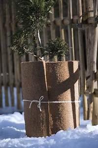 Balkonpflanzen Winterfest Machen : balkonpflanzen winterfest machen pflanzen richtig ~ Watch28wear.com Haus und Dekorationen