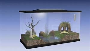 How to Build a Vivarium: 14 Steps (with Pictures) - wikiHow