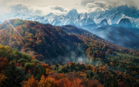 nature landscape mountain forest fall mist trees