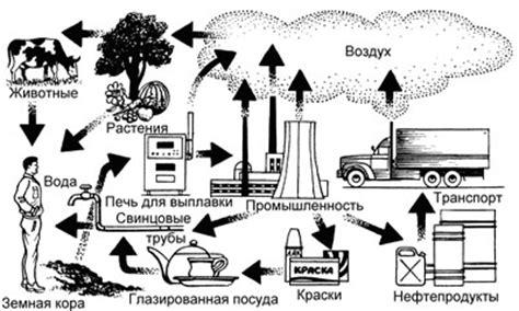 Влияние нефтегазовой промышленности на состояние окружающей среды и здоровье человека