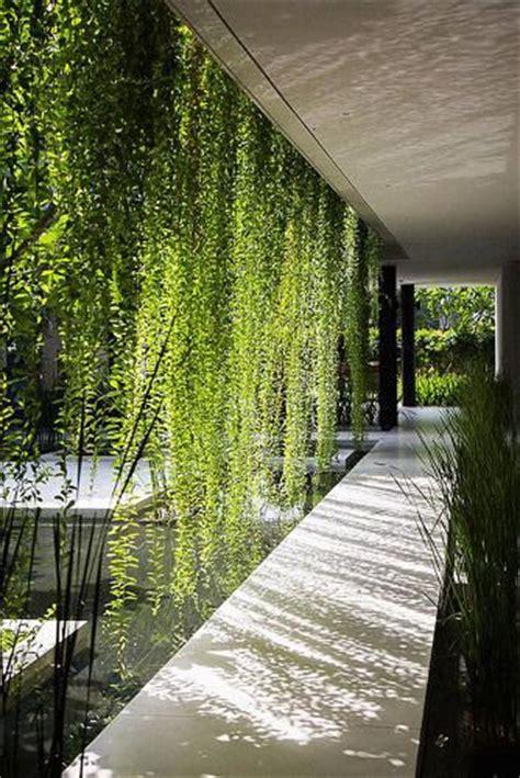 lush spa  vietnam    modern age hanging gardens