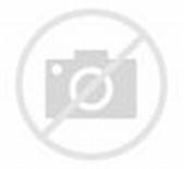 Résultat d'images pour gif fille panda manga