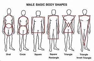 The body shape descriptions used all too often by women's ...