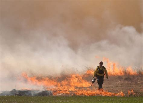 Some Mid-michigan Counties Under Burn Ban