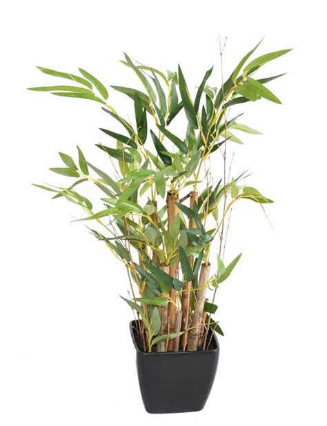 bambou en pot interieur bonsa 239 artificiel mini bambou en pot pvc carr 233 plante artificielle d int 233 rieur h 50 cm