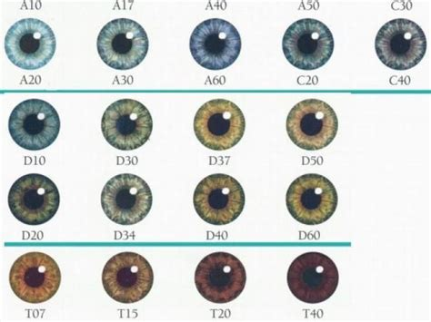 Common Eye Colors For by What Is Your Actual Eye Color