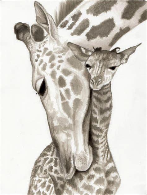 images  drawing   giraffe head giraffe