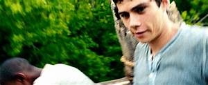 Dylan O Brien S GIF - Find & Share on GIPHY