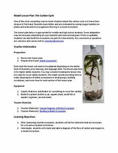 The Carbon Cycle Lesson Plan For 7th