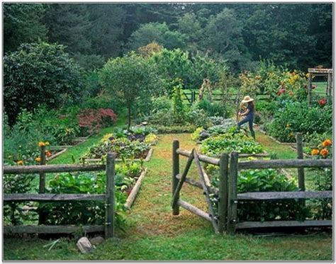 the 25 best vegetable garden design ideas on