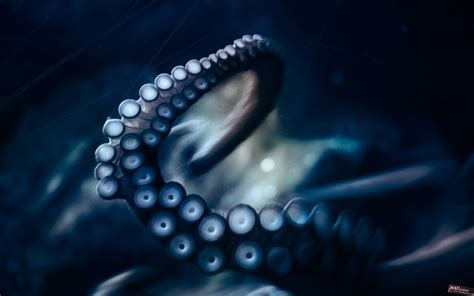 Octopus Wallpapers Wallpaper Cave