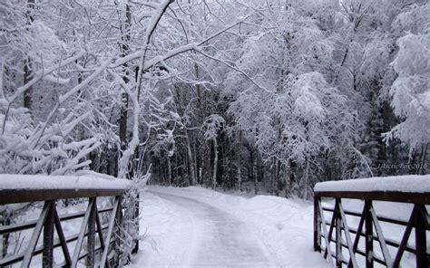 Walking in a Winter Wonderland GloHoliday
