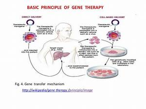 Gene Therapy  Principles  Problems And Prospects