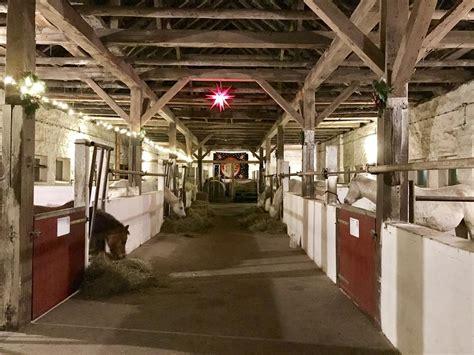 Pferdegarten Equilibri  Platz Für Vollblutaraber Paddock