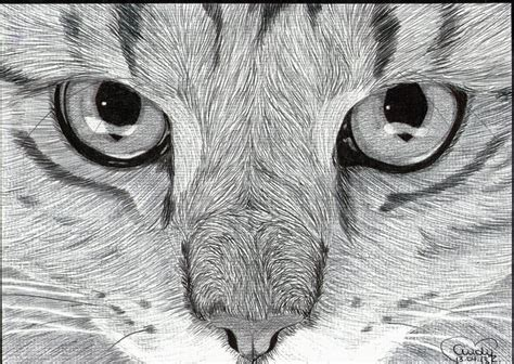 Cats Eyes Ballpoint By Cindyr On Deviantart