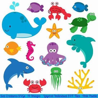 Sea Ocean Creatures Animals Fish Templates Cutting