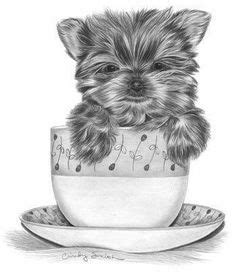 draw  yorkshire terrier art learning