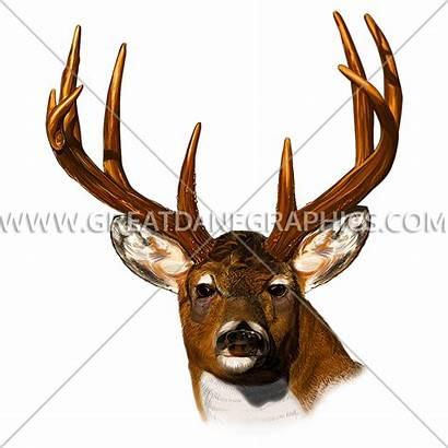 Deer Clipart Easy Head Transparent Webstockreview Stare