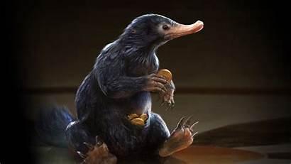 Beasts Fantastic Creatures Film Imagine Engine