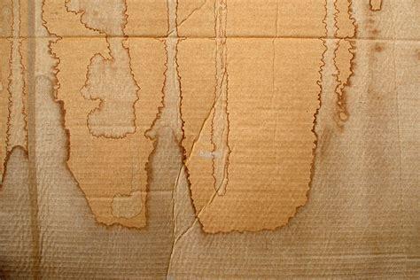 cardboard textures textures design trends
