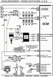 Holden Vr V6 Wiring Diagram