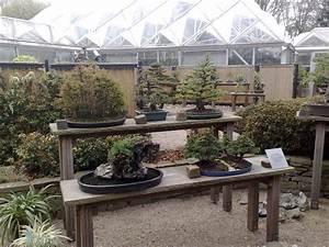 20 nrw bonsaitage in essen vegetation daheim for Whirlpool garten mit bonsai essen