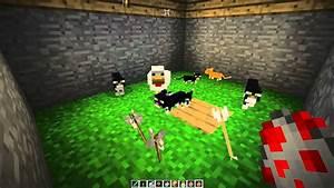 [Minecraft] Baby Ocelot kills a chicken! Cute! - YouTube