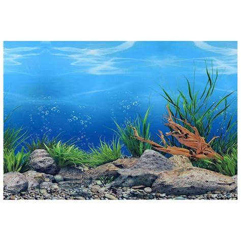 double sided fish tank poster sea world
