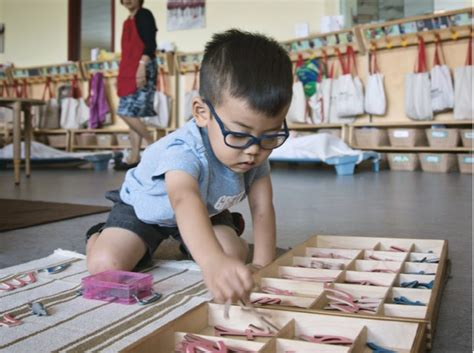 Suzuki School Of by The Suzuki School Wholesome Montessori Learning With A
