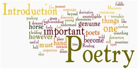 poetry introduction  poetic devices assignment point