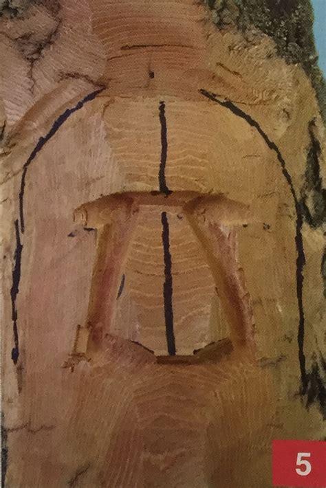 carving  bark woodspirit carving magazine