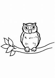 Eule Auf Ast : ausmalbilder eule auf einem ast eulen malvorlagen ~ Frokenaadalensverden.com Haus und Dekorationen