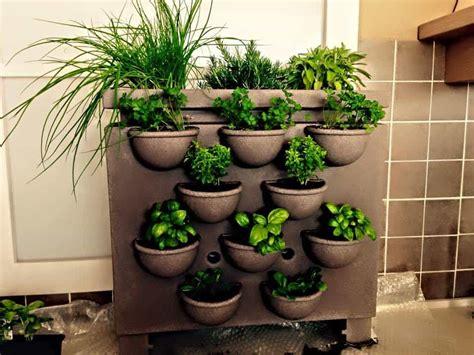 vasi per orto orto in vaso orto da coltivare