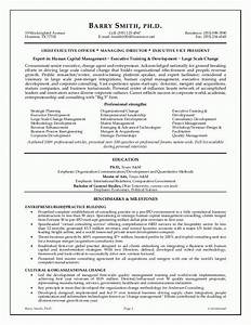 Executive resume examples musiccityspiritsandcocktailcom for Executive cv