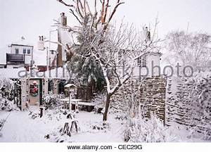 Winter Snow Covered Country Cottage Detached House After A ...
