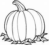 Pumpkin Coloring Printable Pages Pumpkins Halloween Printables Fall Pumpking sketch template