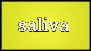 Saliva Meaning