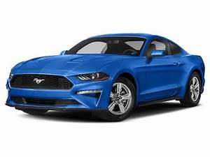 2021 Ford Mustang EcoBoost Premium Belleville MI   Ann Arbor Canton Westland Michigan ...