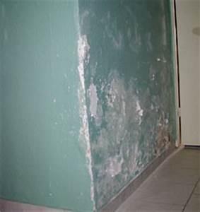 Feuchtigkeit In Der Wand : folgesch den durch feuchtigkeit an den baustoffen ~ Sanjose-hotels-ca.com Haus und Dekorationen