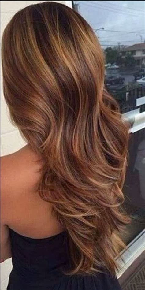 Before And After To Brown by 1000 Ideas About Highlights In Brown Hair On