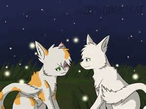 Warrior Cats Couples