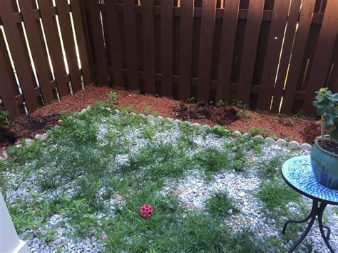 backyard makeover diy landscaping project hometalk